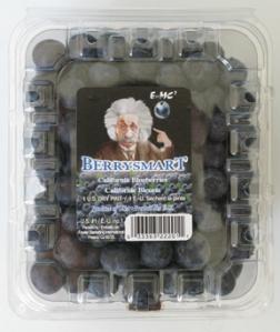 blueberry container with Albert Einstein