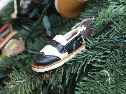 shoe on shoe tree