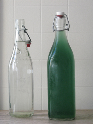 a bottle of chilled nettle tisane and a bottle of water side by side